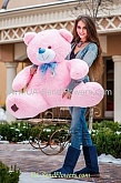 Pink Teddy Bear 160sm