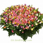 Cart 501 multicolored tulip