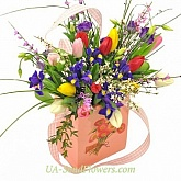 Flowers Blooming in spring package