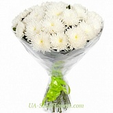 Bouquet of 15 white chrysanthemums