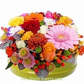 Flowers in a box Irresistible style