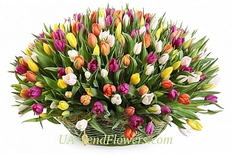 Buy Flower Cart Spring beauty cheap with delivery to Kiev and Ukraine
